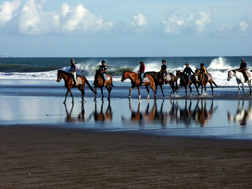 family bali tours - Bali Horse Riding4
