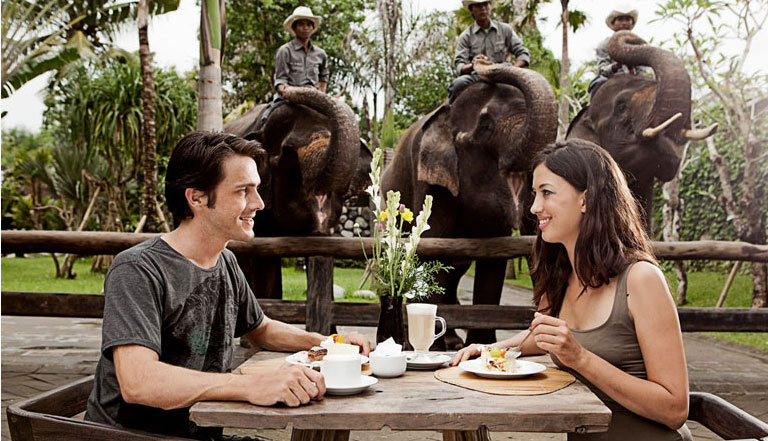 Image Result For Bali Airport Transfer Services How To Go From Bali