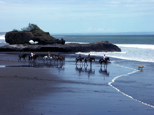 family bali tours - Bali Horse Riding2