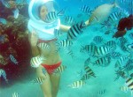 family bali tours - sea walker1